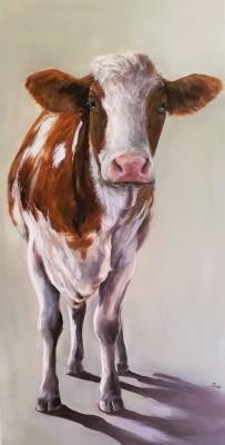 Bruinbonte  koe
