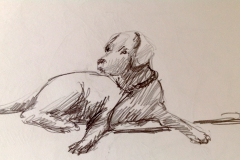 schets Marianne van Boxtel