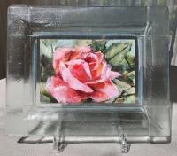 Roos-in-glazen-lijstje-5