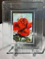 Roos-in-glazen-lijstje-8