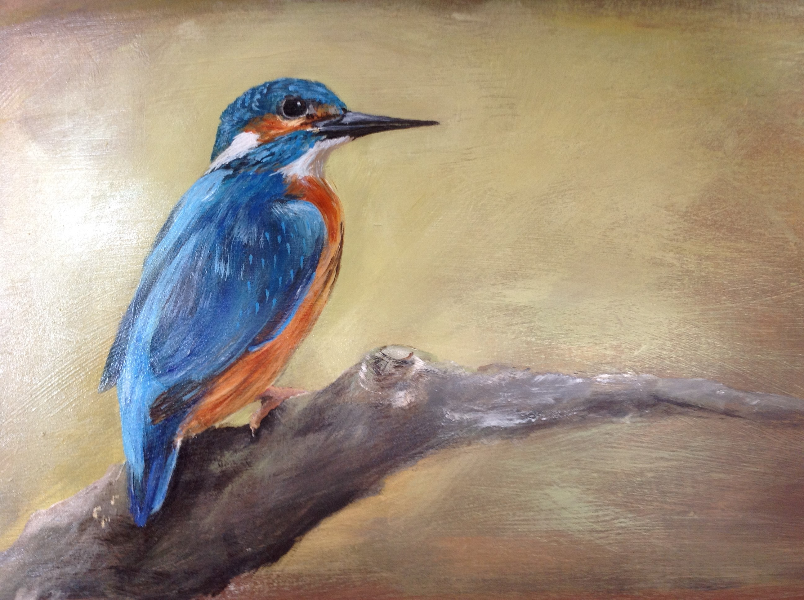 ijsvogel in acryl