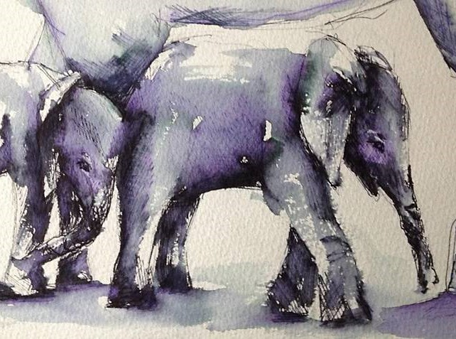 olifant in aquarel