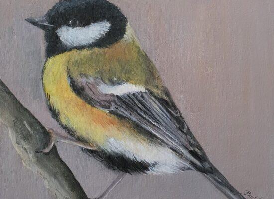 Schilderij-dieren-vogel-koolmees